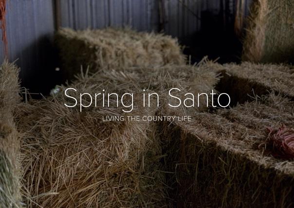 Spring in Santo