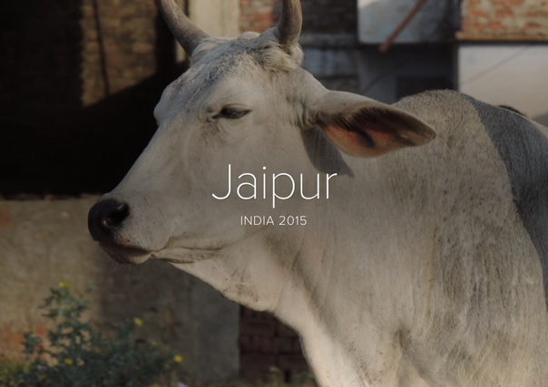 Jaipur, India 2015