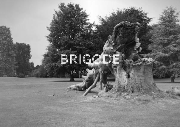 Brigode